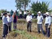 Proyecto gubernamental beneficia a familias pobres en Vietnam
