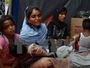 Myanmar y ACNUR acordaron plan de repatriación de inmigrantes en Tailandia