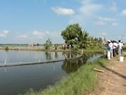 Refuerza Kien Giang cumplir meta anual de exportaciones
