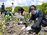 Lanzan campaña de protección del mar en Vietnam