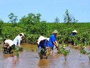 Estados Unidos sigue asistencia para programas humanitarios en Vietnam