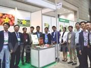 Estudian empresas vietnamitas mercado japonés