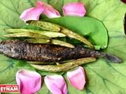 Go Thap, destino con infinitos pantanos de loto y sabores de gastronomía rural