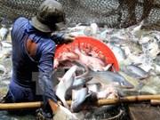 Aumentan exportaciones de productos agroforestales y acuáticos de Vietnam