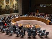 Malasia preside el Consejo de Seguridad de la ONU en agosto de 2016