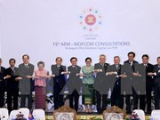Comercio ASEAN-China crece por promedio de 18,5 por ciento