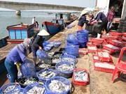 Exportaciones acuícolas de Vietnam suman tres mil 650 millones de dólares