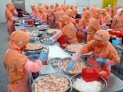 Exportaciones de camarones de Vietnam crecerán a pesar de Brexit