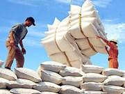 Vietnam busca aumentar exportaciones de arroz de alta calidad