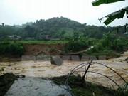 Tifón Dianmu dejó decenas de muertos y heridos en Vietnam