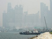 Neblina originada de incendios forestales en Indonesia sigue afectando Singapur