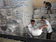 Vietnam y Tailandia ganan subasta para exportar arroz a Filipinas