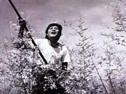 Por primera vez presentan películas vietnamitas en pantalla india