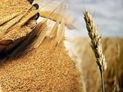 Agricultora vietnamita honrada por la FAO