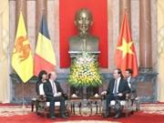 Destacan ayudas no reembolsables de región belga a Vietnam