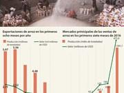 [Infografía] Disminuyen exportaciones de arroz de Vietnam