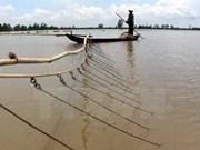 Provincias deltaicas de Vietnam plantean medidas contra el cambio climático