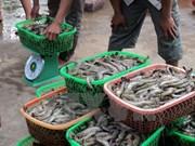 Es seguro consumir productos acuícolas de plataforma continental de Vietnam