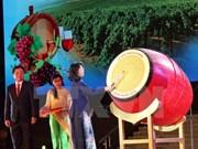 Efectúan en Vietnam Festival de Uvas y Vinos