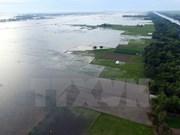 Construirán centro de datos ambientales en Delta de Mekong