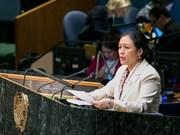 Vietnam exhorta aumentar recursos para el desarrollo