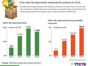 [Infografía] Gran valor de exportación vietnamita de verduras en 2016
