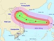 Vicepremier orienta labor de prevención contra tifón Sarika