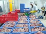 Vietnam pronostica crecimiento en exportaciones de pescado Tra