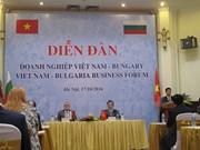 Vietnam, uno de los socios comerciales clave de Bulgaria en Sudeste de Asia