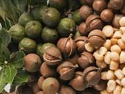 Impulsan cooperación asociaciones de macadamia de Vietnam y Australia