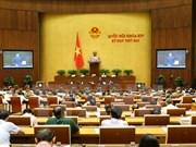 Parlamento vietnamita analiza borrador de enmiendas a Código Penal