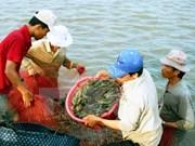 Visita Vietnam delegación de empresas acuícolas de Perú