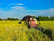 TLC Vietnam-UE: gran oportunidad para productos agrícolas vietnamitas
