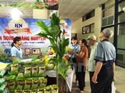 Se esfuerza Vietnam por mejorar calidad e inocuidad alimentaria
