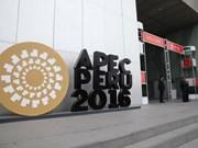 Vietnam desempeña importante rol en marco de APEC