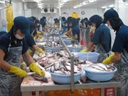 Vietnam registra superávit comercial de tres mil millones de USD en diez meses