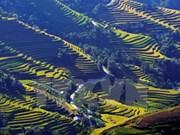 Inauguran en provincia de Vietnam Festival de batintines de etnia Muong