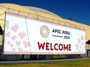 Vicepremier vietnamita interviene en la conferencia ministerial de APEC en Perú