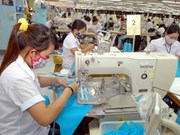 Productos de Vietnam se benefician de TLC con Unión Económica Euroasiática
