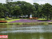 Lago de Than Tho atrae a visitantes