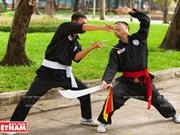 [Fotos] Formas únicas de pelear de gallo