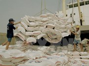 Vietnam figura entre cinco mayores productores de arroz en 2017
