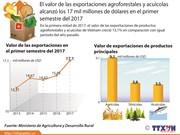 Valor de las exportaciones agroforesales y acuícolas crece 13,1 por ciento