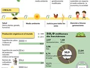 [Infografía] Panorama general de la agricultura orgánica
