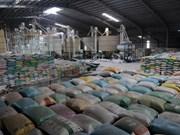 [Video] Exportaciones de arroz de Vietnam sobrepasarán expectativas