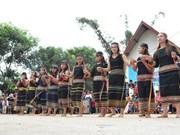Ceremonia de arroz del grupo étnico de Xe Dang en Dak Lak