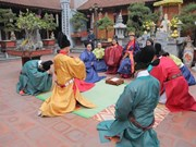 Vietnamitas en ultramar buscar promover cultura tradicional