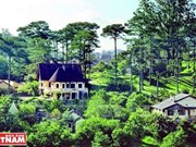 [Fotos] Impresionantes villas de estilo francés en bosque de pinos en Da Lat
