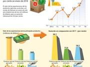 Exportaciones de productos agrícolas, acuícolas  y silvícolas de Vietnam  registran  incremento de 26 por ciento en enero de 2018