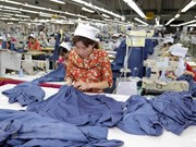 Economía de Vietnam podría crecer 6,83 por ciento este año